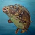 mirror carp painting