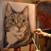 Cat Jojo.jpg